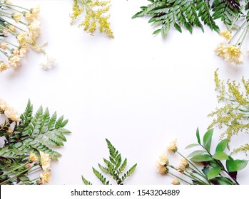 Assorted flower and leaf border on white background