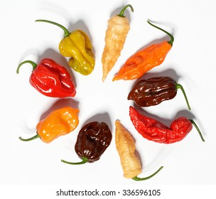 Assorted fresh organic red chili peppers, habanero,colorful red and yellow sweet peppers and jalapeno
