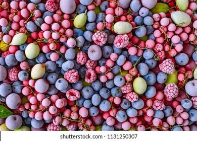Assorted frozen berries background raspberry, blackberry, bilberry, blueberry