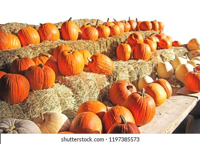 Assorted group of orange pumpkins / squashes in a row on hay blocks. White background, side perspective.
