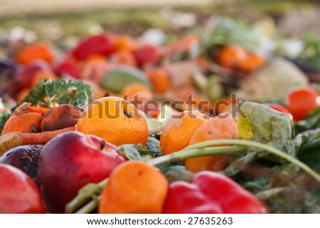 Assorted mildewing fruits and vegetables in a compost heap.