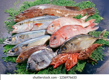 Assorted of plenty seafoods to use sashimi or japanese pot and so on