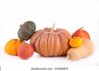 assorted pumpkin