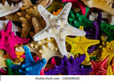 assorted starfish dried and painted in different colors for use in decoration