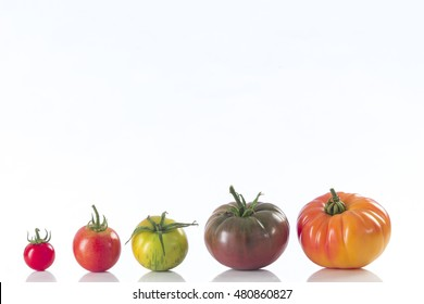 assorted tomatoes heirloom isolated on white