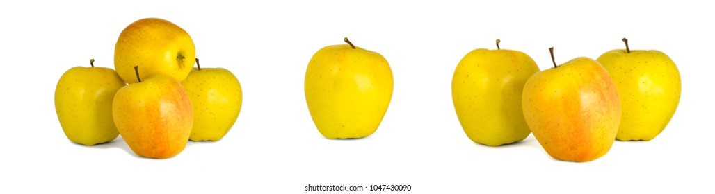 Assorted yellow apples Golden Delicious isolate white background. Procurement under the inscription and illustration
