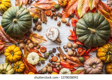 Assortment of colorful farm pumpkins with mug of hot chocolate, nuts , spices and autumn leaves, top view. Autumn still life with pumpkins. Thanksgiving recipes. Flat lay. Seasonal