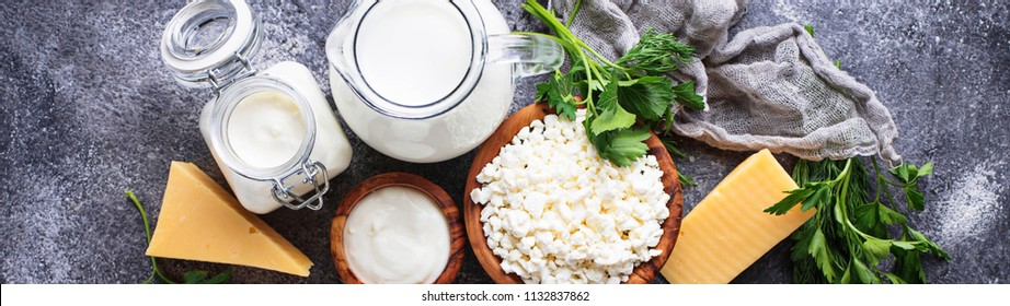 Assortment of dairy products. Milk, yogurt, sour cream, cottage and cheese. Banner for site design