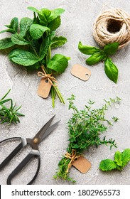 Assortment of fresh aromatic herbs from above on grey concrete background. Mint, thyme, basil, rosemary, top view. - Shutterstock ID 1802965573