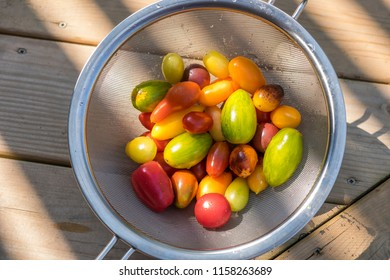 An assortment of fresh colorful tomatoes in a wire basket.