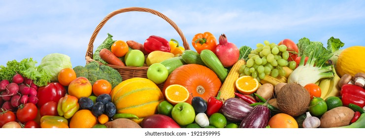 Assortment of fresh organic fruits and vegetables outdoors. Banner design