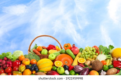 Assortment of fresh organic fruits and vegetables outdoors