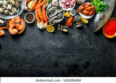 Assortment of fresh seafood. On black rustic background