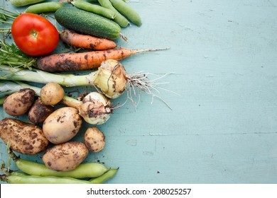 Assortment of fresh vegetables with text area on right