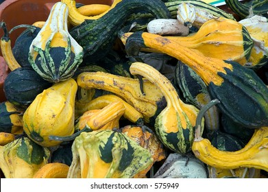 Assortment of gourds