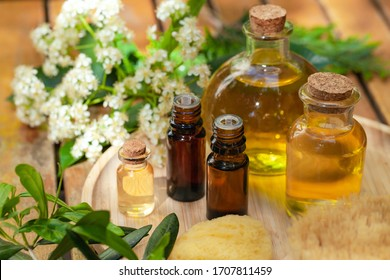 Assortment of natural oils in glass bottles on wooden background. Concept of pure organic ingredients in cosmetology. Bath accessoiries, atmosphere of harmony, relax. Close up macro. Healthy lifestyle