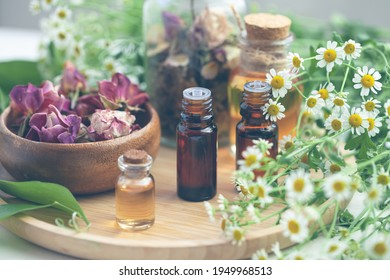 Assortment of organic essential oils. Natural moisturizing body and face treatment. Rose, camomile extract for healthy young skin. Relaxation, aromatherapy, salon spa. Close up, macro view