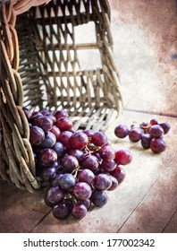 assortment of ripe sweet grapes in basket on texture background/Grapes in the basket/ Summer Wine Season
