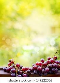 assortment of ripe sweet grapes on sunny bright background/ Summer Wine Season