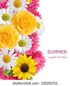 Aster, roses, sunflowers and chamomile flowers background isolated on white with sample text. Summer flowers