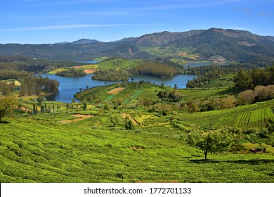 """""""Astonishing view of Emerald lake and the surrounding Nilgiri hills, covered with tea plantations of Ooty hill station, Udhagamandalam district, Tamilnadu"""""""