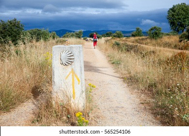 ASTORGA COUNTRYSIDE, SPAIN - AUGUST, 04: Pilgrimns along the way of St. James on August 03, 2016