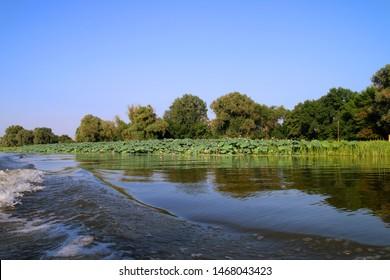 Astrakhan region, Delta of Volga