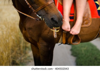 astride a horse