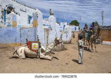 ASWAN, EGYPT - MARCH 20, 2010 : A camel relaxes in the Nubian village of Garb-Sohel after carrying tourists along the west bank of the River Nile in the Aswan region of Egypt.