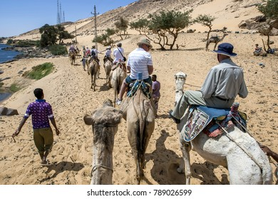 ASWAN, EGYPT - MARCH 20, 2010 : A camel train with tourists aboard head along the west bank of the River Nile towards the Nubian village of Garb-Sohel in the Aswan region of Egypt.