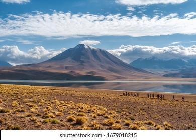 Atacama Desert, Chile - February 20, 2020: Tourists exploring Laguna Miscanti, a remote high altitude lake located in the Atacama Desert in northern Chile, South America.