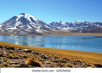 Atacama Desert, Chile: Lagoons of Chile