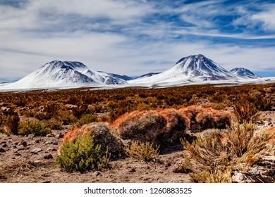 Atacama Desert landscape - Chile, SoutAmerica road trip
