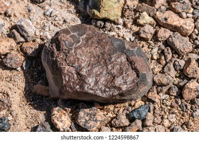 Atacama Desert is maybe the best place in the world to found meteorites on the ground. Going with a meteorite hunter deserves this, a tektite black meteorite coming from the outer space to the desert