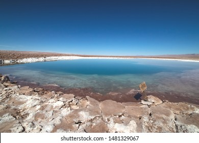 """Atacama desert, Salar de Atacama, Baltinache Lagoon, Chile. Saline lake, turquoise water, sunny day, blue sky. Outdoors and travel. In the foreground there is sign """"Entrance""""."""