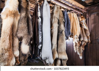 atelier of fur products