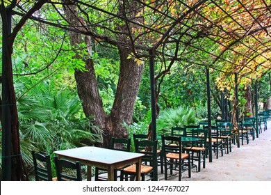 Athens, Attica, Greece – October 29, 2018:  Tables and chairs down the side of an arbor covered sidewalk in a cafe in the National Garden in Athens, Greece.