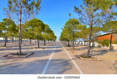 ATHENS GREECE, 25 SEPTEMBER 2016: bicycle track next to the Faliro Sports Pavilion Arena - part of the Faliro Coastal Zone Olympic Complex Athens Greece. Editorial use.