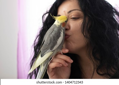 Athens, Greece - October : One year old cockatiel parrot stand over a woman's hand and she kiss the cockatiel parrot.