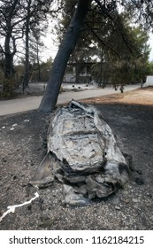 ATHENS, MATI / GREECE - JULY 25 2018: Burn out boot in Mati near Athens after the fire-tragic