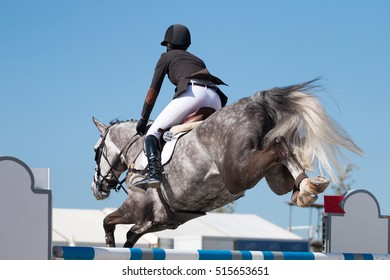 Athlete performing on a horse obstacle jumping competition.