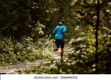 athlete runner in blue sports jacket forest trail in rain