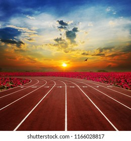 Athlete Track or Running Track with nice red lotus scenic