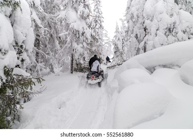 Athletes on a snowmobile moving in the winter forest in the mountains of the Southern Urals.