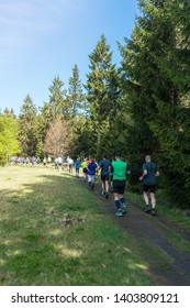 Athletes trail running in a forest