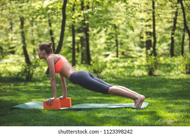 Athletic lady is doing fitness among marvelous park. She is staying in plank and using yoga blocks for wrists. Relaxing in plank outside concept
