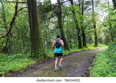 Athletic runner running on tropical forest trail, dramatic tone