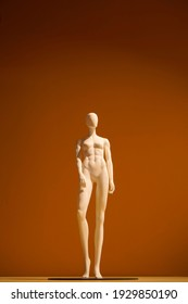athletic women's dummy on an orange background
