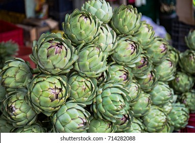 Atiso Flower. Artichoke fresh flower