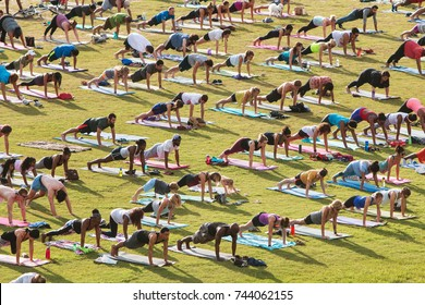 ATLANTA, GA - JULY 2:  Dozens of people do the plank pose as they take part in a free group yoga class at the Old Fourth Ward Park on July 2, 2017 in Atlanta, GA.